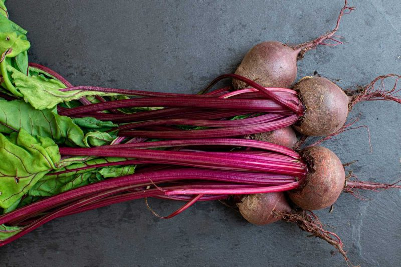 The Best Juicers for Beets – Our Reviews and Buyer's Guide